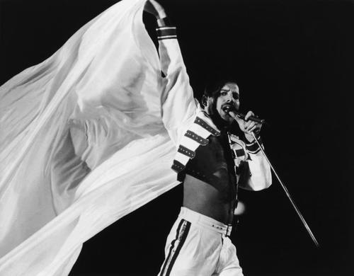 Freddie1986